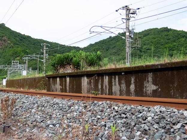 002678_20180811_JR湯川
