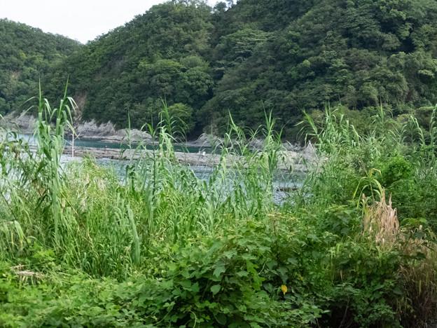 002681_20180811_JR湯川