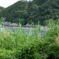 Photos: 002681_20180811_JR湯川