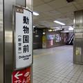 Photos: 002779_20181020_大阪市高速電気軌道_動物園前