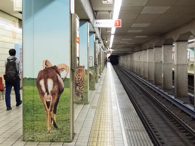 002781_20181020_大阪市高速電気軌道_動物園前