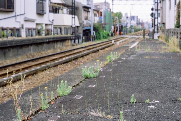 003136_20190428_南海電気鉄道_西天下茶屋