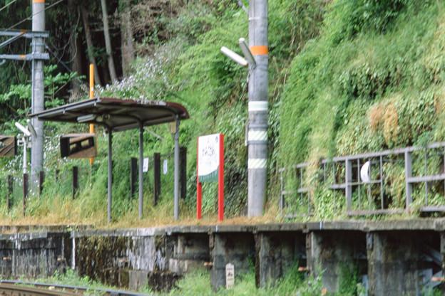 003195_20190429_南海電気鉄道_上古沢