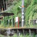 Photos: 003195_20190429_南海電気鉄道_上古沢