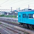 Photos: 003220_20190502_五条