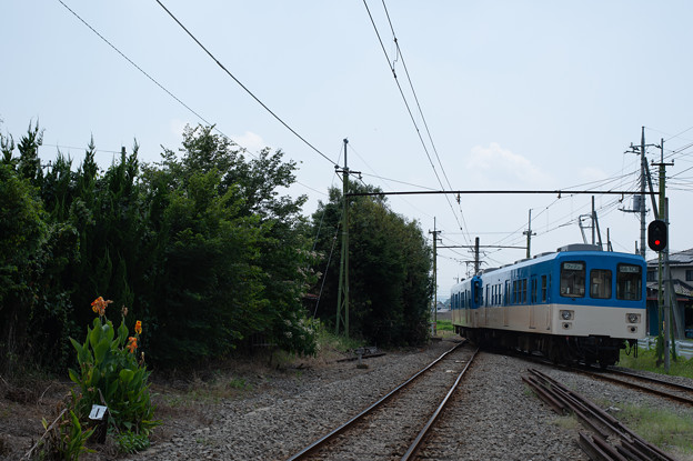 003398_20190804_上信電鉄_山名