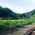 Photos: 003444_20190812_JR篠目