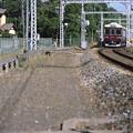 Photos: 004327_20200607_阪急電鉄_松尾大社-嵐山