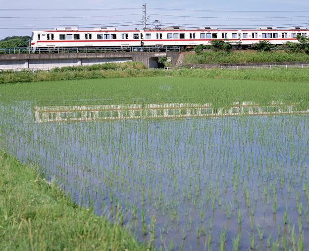 004331_20200621_神戸電鉄_神鉄道場-横山