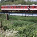 Photos: 004336_20200621_神戸電鉄_二郎-道場南口