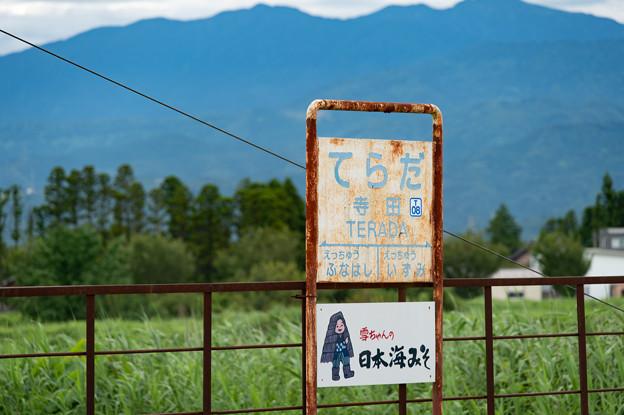 004515_20200811_富山地方鉄道_寺田