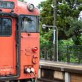 004751_20200813_JR雨晴