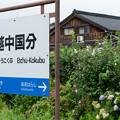 Photos: 004770_20200813_JR越中国分