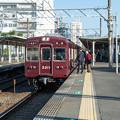 Photos: 005144_20201025_南千里