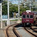 Photos: 005167_20201025_豊津