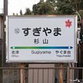 Photos: 005354_20200103_豊橋鉄道_杉山