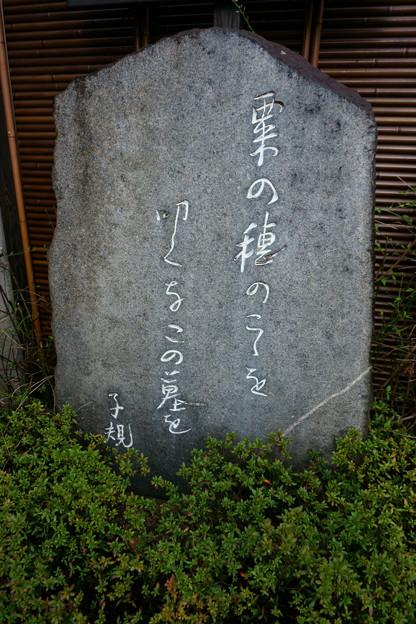 子規の句碑
