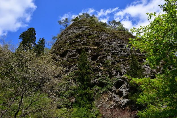 新緑と古岩屋