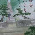 Photos: 東慶寺 花だより 井上ひさし