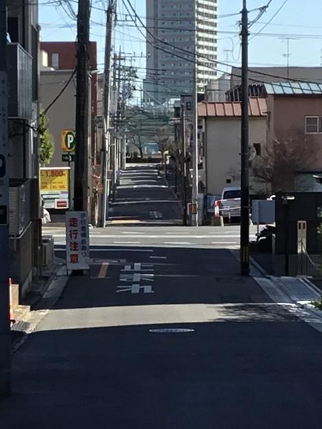 Photos: 散歩3