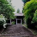 写真: 竹林寺の仁王門
