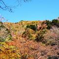 写真: 三段峡の紅葉