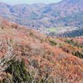 山間の紅葉