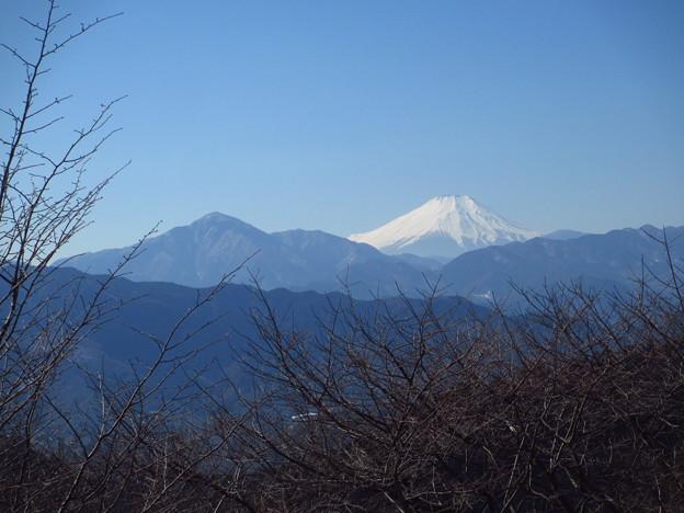 写真: 早春の富士