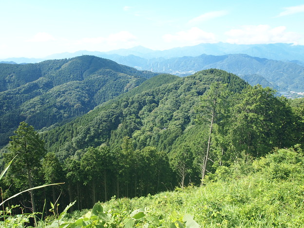 Photos: 小仏城山