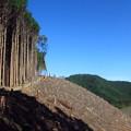 Photos: 山への道