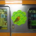 Photos: 東京アドベンチャーライン