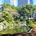 Photos: 早春の庭園