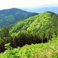 景信山からの眺め