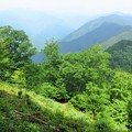Photos: 山にて