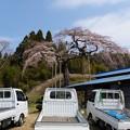 写真: 山里の春。