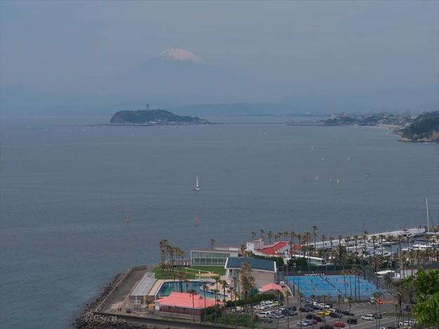 写真: 逗子から富士山♪
