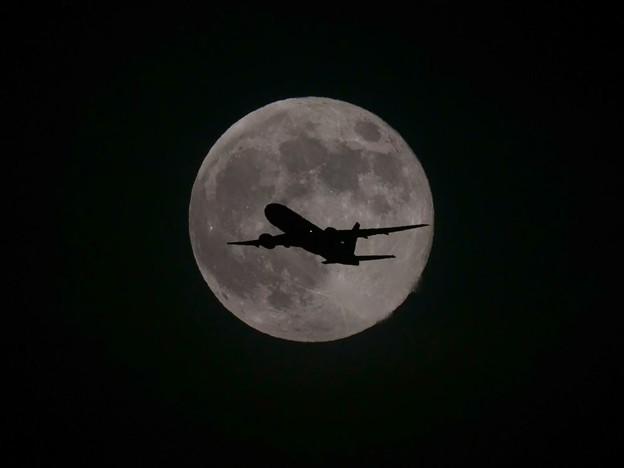 写真: 満月の夜6月・・・