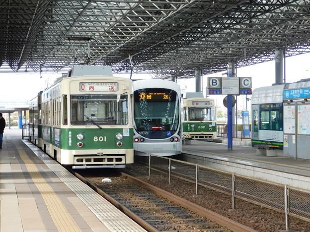 DSCN3554