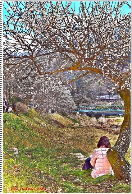 アートな春心