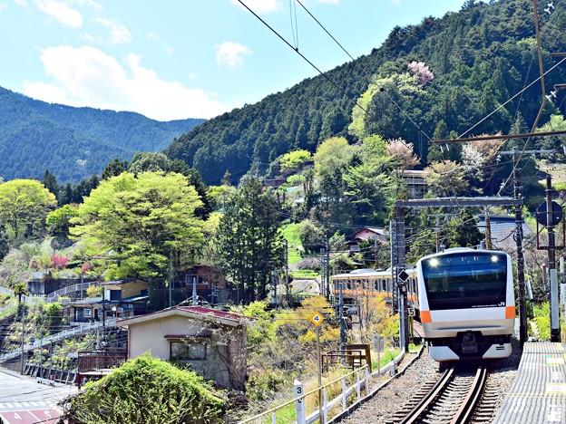 Photos: 新緑の沿線(1)