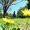 写真: 木陰の乙女