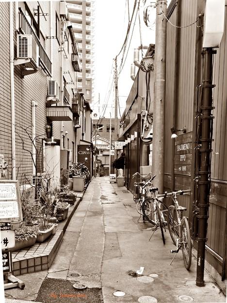 写真: 奥の路地道