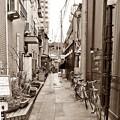 Photos: 奥の路地道