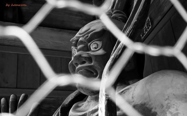金剛寺仁王像