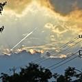 写真: 光芒の飛行機雲