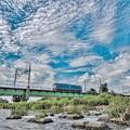 写真: ボッチ機関車