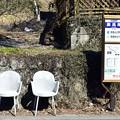 写真: 山郷のバス停