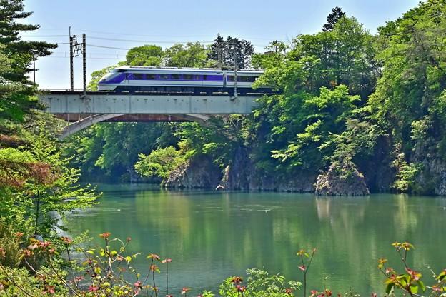 写真: 新緑の鬼怒川