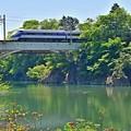 Photos: 新緑の鬼怒川