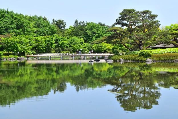 Fresh Green Water